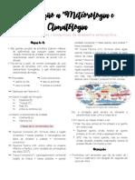 Resumo Escalas Meteorológicas - Introdução a Meteorologia e Climatologia