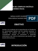 EMBRIOLOGIA DEL COMPLEJO ENCEFALO-CRANEO-FACIAL.pptx