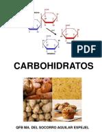 Carbohidratos y Su Metabolismo (1)