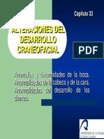 Capitulo_33.pdf