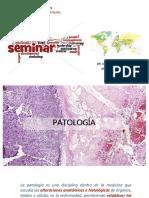 Que Es Un Seminario - Usmp Patología i 2019-II