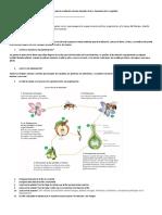 Cuestionario Para La Evaluación Ciencias Naturales Octavo