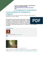 Plantas Con Conciencia