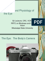 Anatomy & Physiology of the Eye.ppt