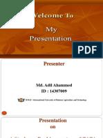 Adil Final Presentation.pptx