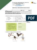 CIENCIAS NATURALES evaluacion.docx