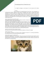 Feline Panleukopenia Virus or Feline Parvo virus.docx