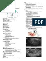 Gyne Notes Abnormal Uterine Bleeding - Dra Trinidad