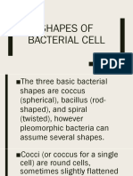 Shapes of Bacterial Cell.