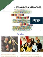 VARIATION IN HUMAN GENOME.pptx