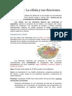 244434918-Fisiologia-de-Guyton-resumen-capitulo-2.docx