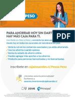 PDF PESO A PESO