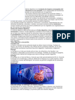 AISLAMIENTOS HOSPITALARIOS.docx