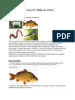 Hewan Vertebrata Dan Invertebrata Beserta Penjelasannya