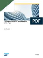 04 CCM White Paper en V1.0