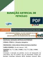 Elevao_2019_1.pdf