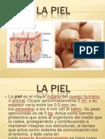 heridasdiapositiva-131210152020-phpapp02