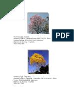 Catalogo Paisajismo_ja Albornoz