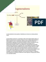Regeneradores de matriz rotativa