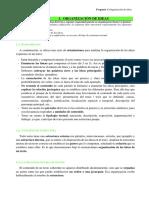 1. Organización de ideas.docx