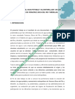 Introduccion documento