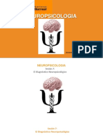 teorias neurocognitivas