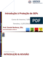 Proteção de SEPs.pdf