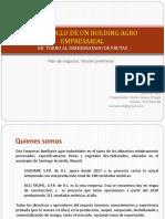 Holding Agro Empresarial V1 (1)