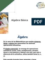 Algebra Básica