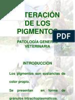Alteracion Pigmentos Diapo Y MINERALES