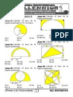 AREAS SOMBREADAS I-II.pdf