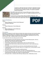 stelprdb5393596.pdf