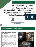 COMITE DE SSO.pptx
