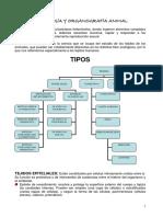 histologia-y-organografia-animal (1).pdf