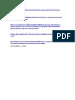 PRINCIPIOS RECTORES y DDHH_PLAN DE ACCION.doc