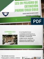 disertacion Carlos Matus.pptx