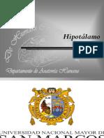 Nucleo del hipotalamo - Uscata marcos.ppt