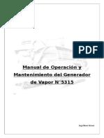 Manual generador