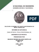 salcedo_sm.pdf