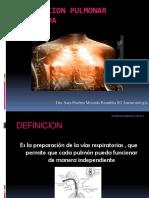 96375867-VENTILACION-PULMONAR-SELECTIVA-2.pdf