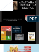 Anatomia de escultura dental