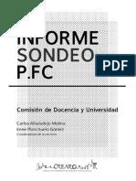 Informe Sondeo PFC