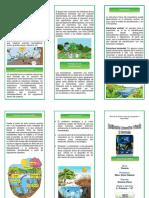 386510725 Triptico Ecosistema Romina