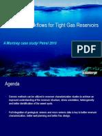 Tight Gas Geoscience