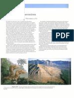 Evolución en plantas 2011.pdf