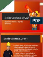 Presentación Reglamento 229-2014 Primera Parte