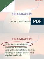 FECUNDACION.ppt