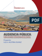 Boletin Audeincia Publica a Duvaz 10-02-2011 OK