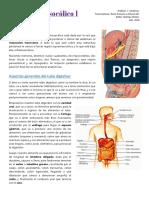 12) Supramesocólico I 2018.pdf