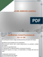 Principios del Derecho Laboral.pdf